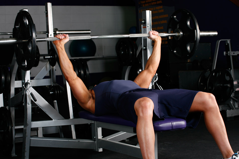 Start To Fitness | Barbell Bench Press (flat)